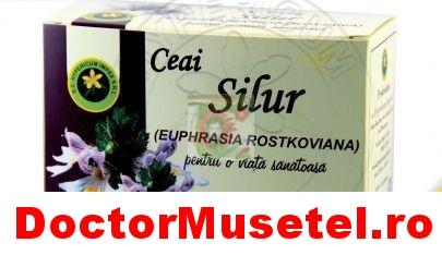 Ceai-de-silur-20g-vrac-HYPERICUM-www-farmacie-naturista-ro.jpg