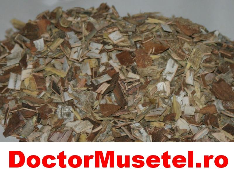 Ceai-de-stejar--coaja--50g-vrac-www-farmacie-naturista-ro-JPG.jpg
