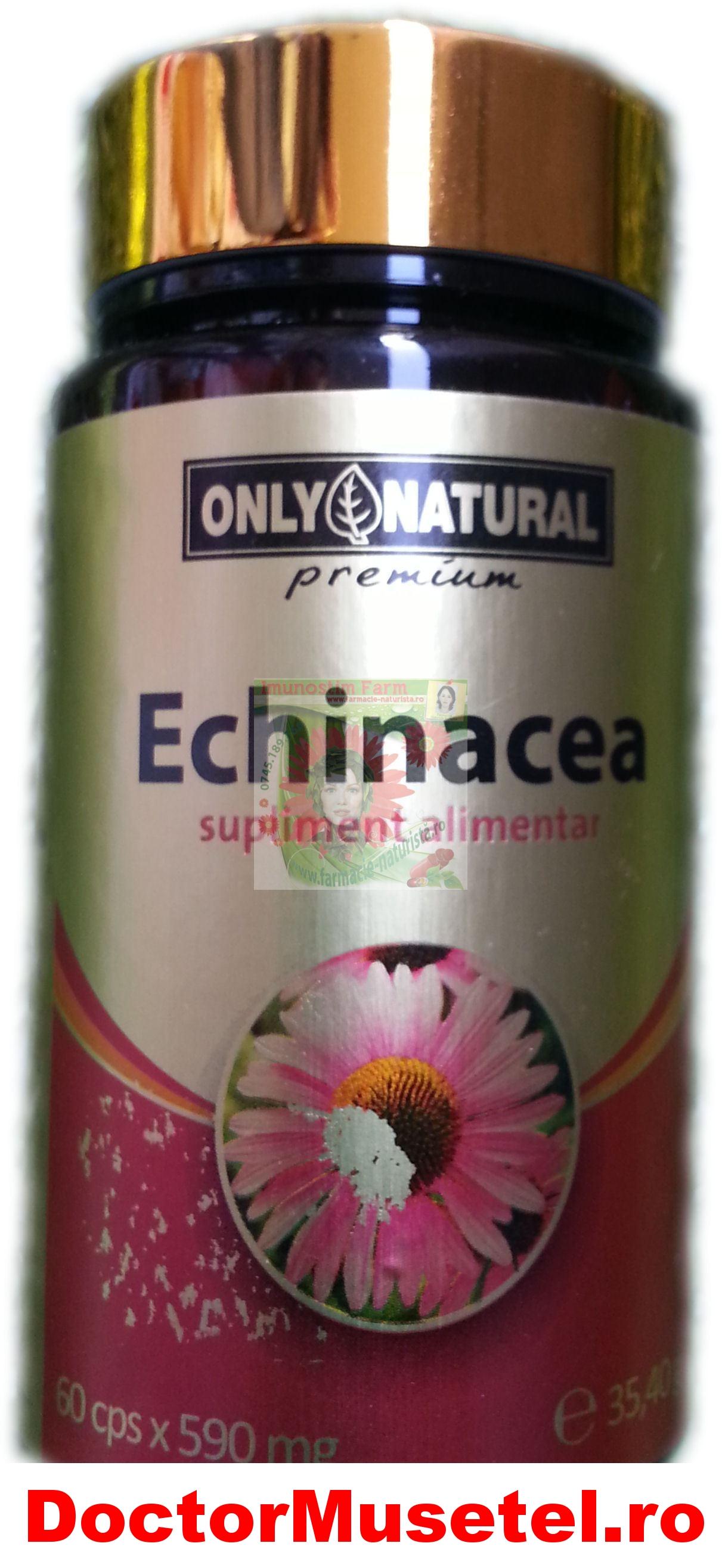 Echinaceea-60cps-ONLYNATURAL-YONG-KANG-www-farmacie-naturista-ro.jpg