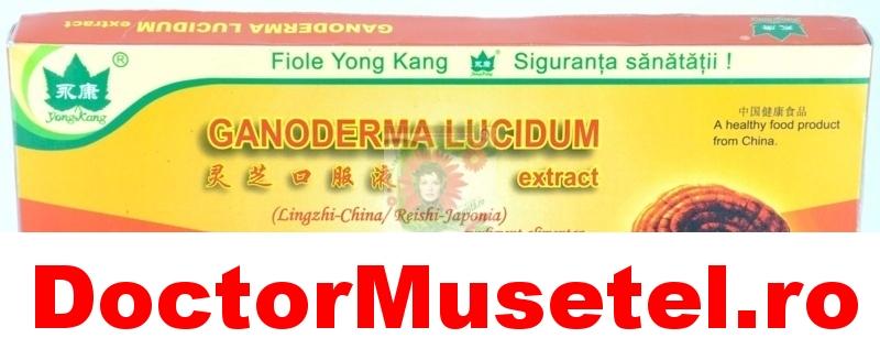 Ganoderma-lucidum--Reishi-Ling-Zhi--2000mg-10fiole-10ML-YONG-KANG-www-farmacie-naturista-ro.jpg