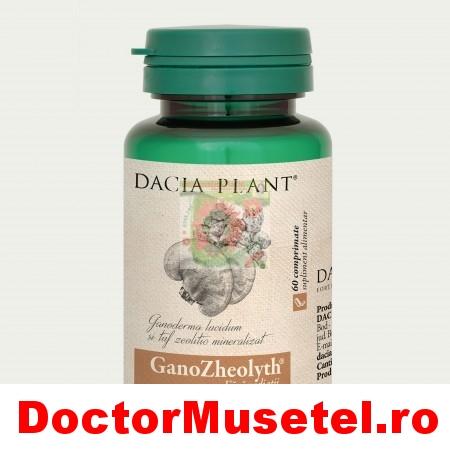 Ganozheolyth-60cp-DACIA-PLANT.jpg