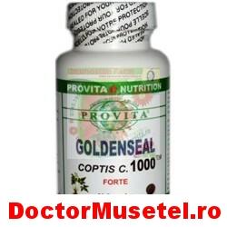 Goldenseal-90cps-PROVITA-ORGANIKA-www-farmacie-naturista-ro.jpg
