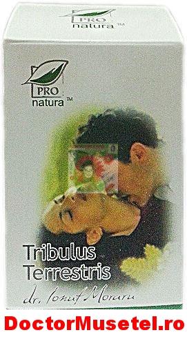 Tribulus-Terrestris-150cps-PRO-NATURA-www-farmacie-naturista-ro.jpg